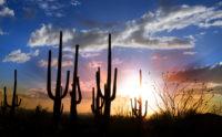is CBD legal in Arizona? Arizona landscape sunset